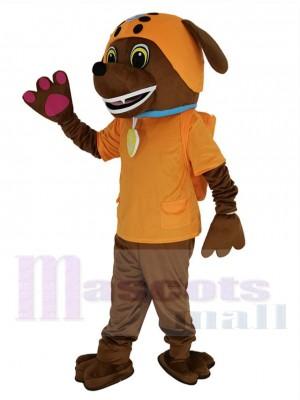 Paw Patrol Zuma Labrador Chien maskottchen kostüm