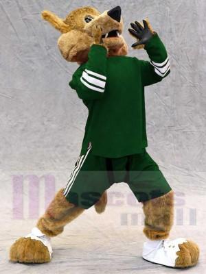 Coyote Loup costume de mascotte