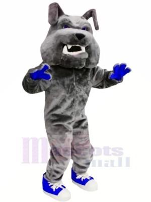 Gris Bouledogue avec Bleu Des chaussures Mascotte Les costumes