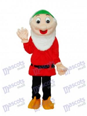 Dwarfs 6 Mascot Adult Costume