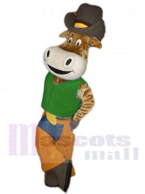 Drôle Cow-boy Bœuf Bovins dans Vert La chemise Mascotte Costume