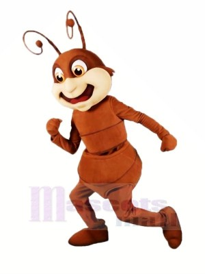 marron Fourmi Mascotte Les costumes Dessin animé