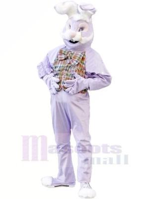 Violet lapin Mascotte Costume Dessin animé