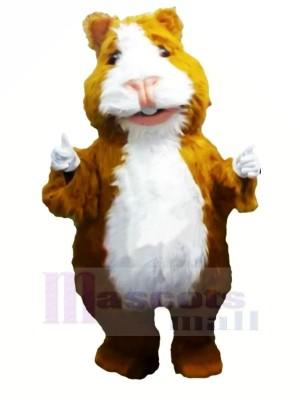 Mignonne Hamster Mascotte Les costumes Dessin animé