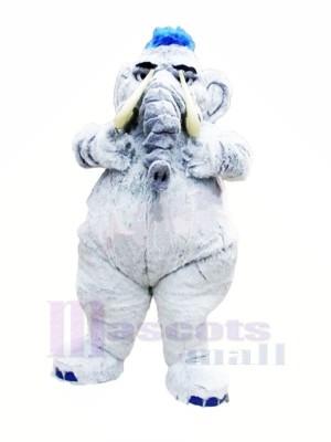 Mammouth Gris l'éléphant Mascotte Les costumes Adulte