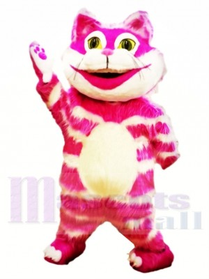 Cheshire Chat Costumes De Mascotte