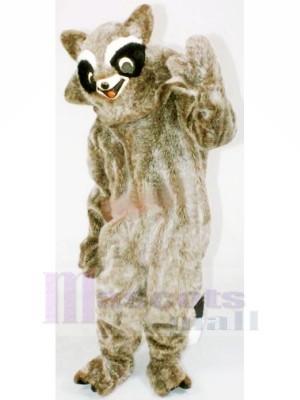 marron Raton laveur Mascotte Les costumes Pas cher
