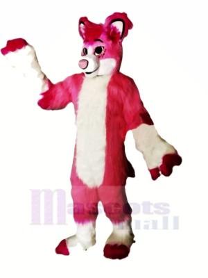 Rose Rauque Chien Mascotte Les costumes