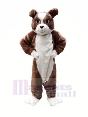 Peluche marron Bouledogue Mascotte Les costumes Dessin animé
