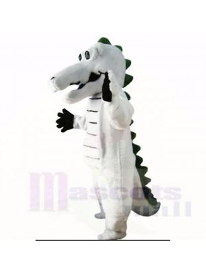 Gris Crocodile Costumes De Mascotte Adulte