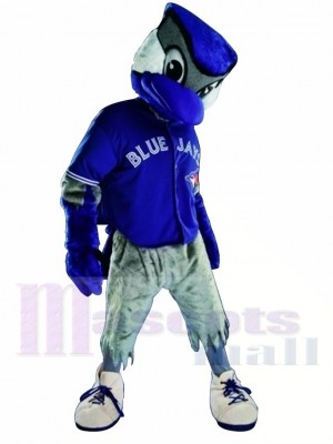 Chemise bleue Toronto Geai bleu Costume de mascotte
