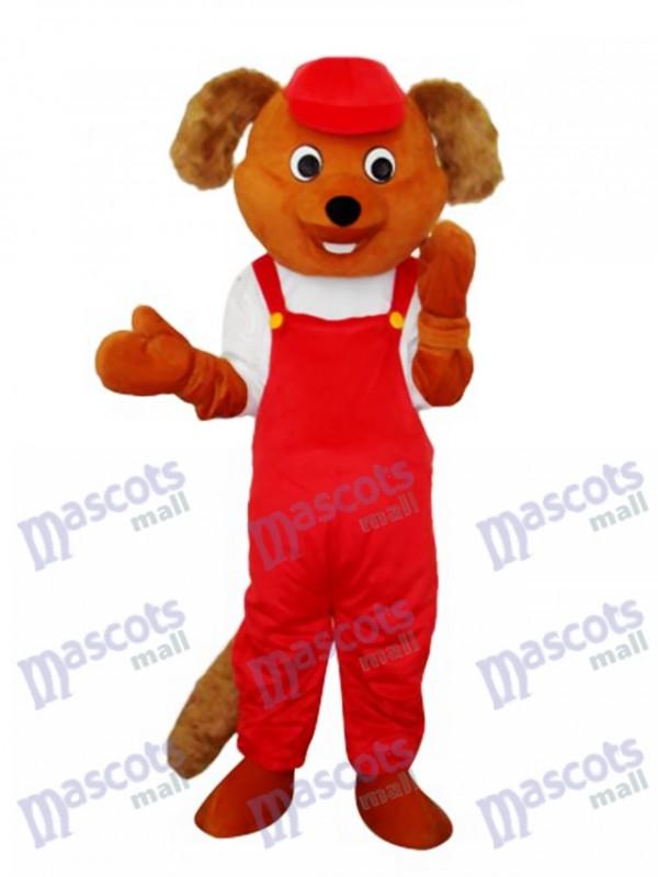 Déguisement de mascotte de rat castor Costume adulte