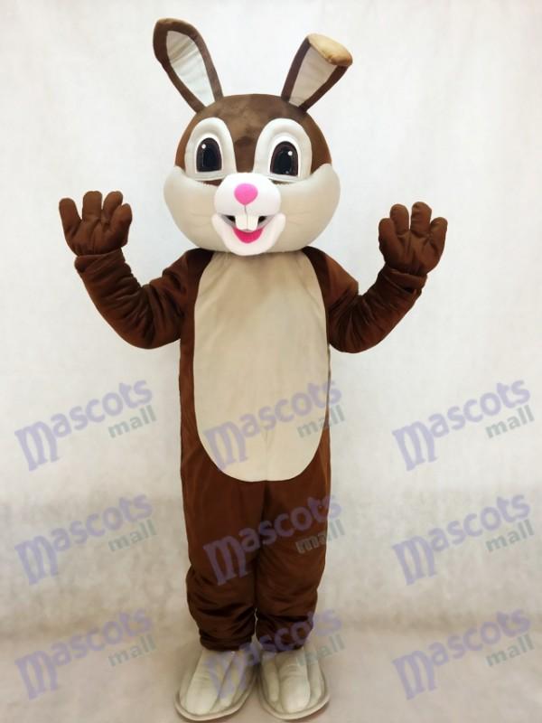 Nouveau costume de mascotte de lapin de Pâques au chocolat