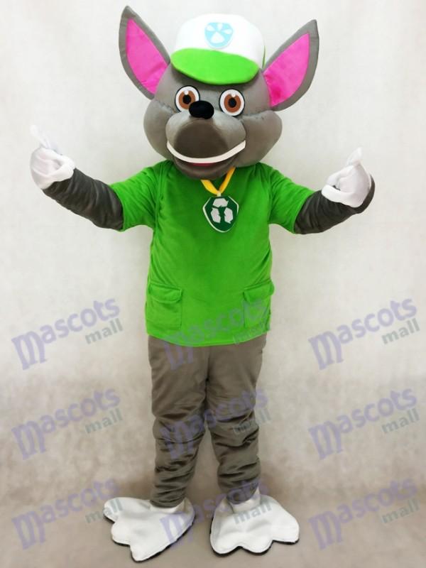 La Pat' Patrouill Paw Patrol Rocky recyclage écologie chiot Mascotte personnage Costume Eco Pup