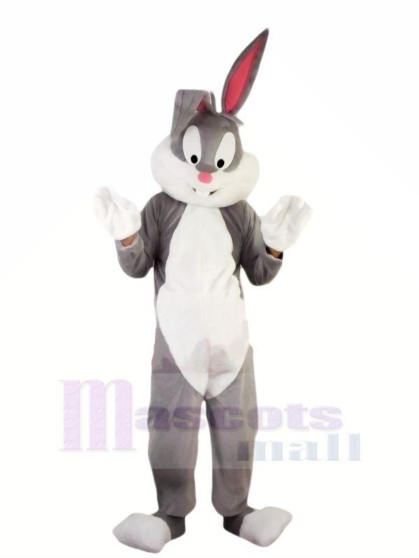 Chaud Pâques professionnelle lapin Mascotte Les costumes Pas cher