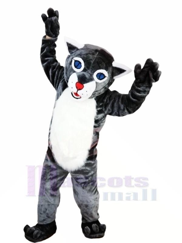 Chaud Vente Chat sauvage Mascotte Les costumes Dessin animé