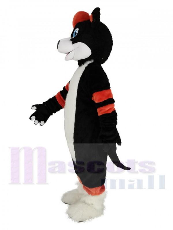 Chien husky maskottchen kostüm