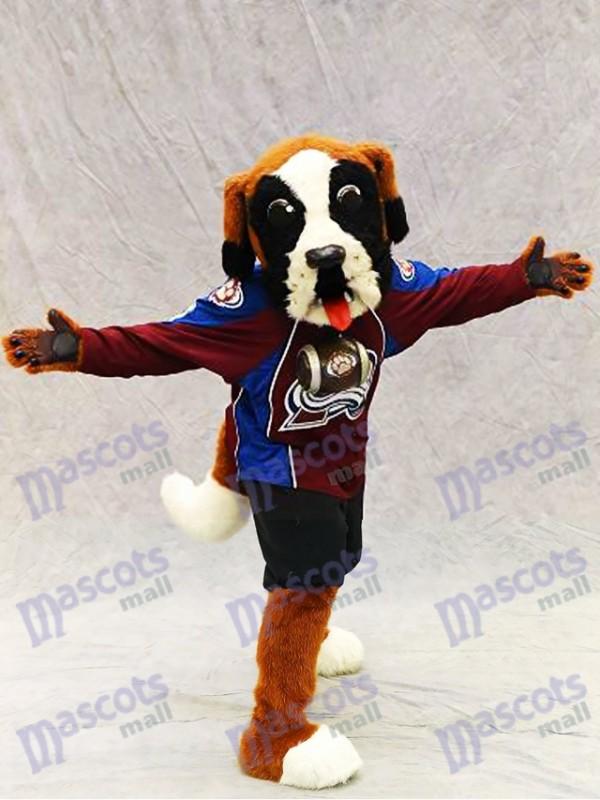 Bernie le chien Saint Bernard Colorado Costume de mascotte d'avalanche Animal