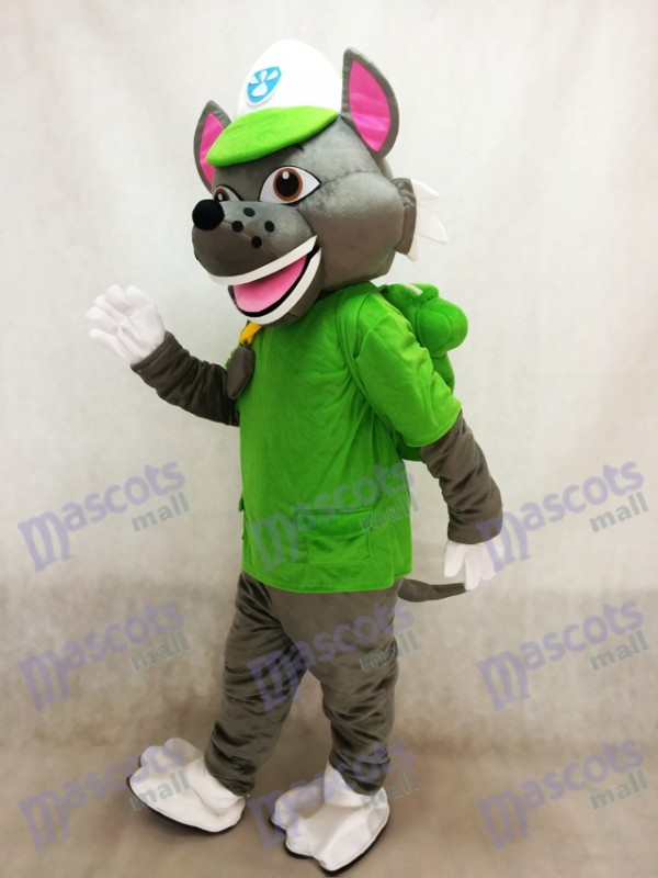 Paw Patrol Recyclage Écologie Pup Rocky mascotte Costume Eco Pup