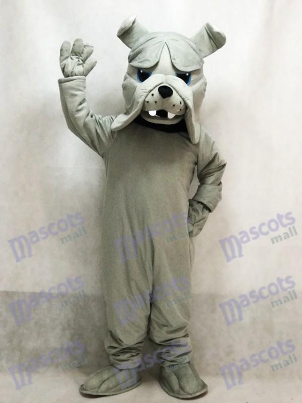 Costume de mascotte chien bulldog gris Bully