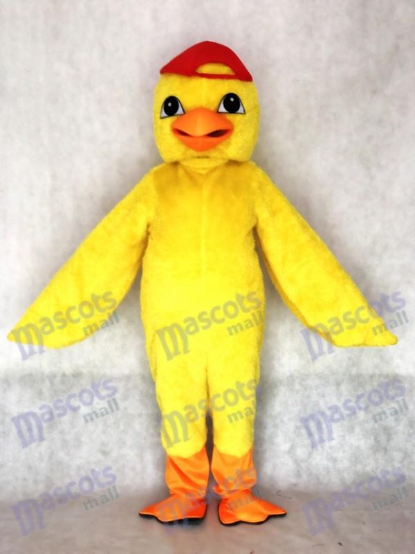 Costume de mascotte de poussin jaune mignon adulte avec animal chapeau rouge
