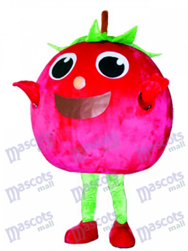 Costume de mascotte de tomate rouge Fruit de légume de fruit