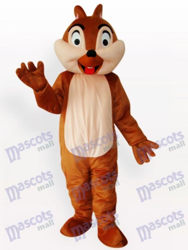 Costume drôle de mascotte d'animal de garçon d'écureuil d'adolescent